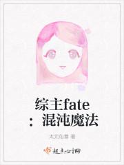 综主fate:混沌魔法
